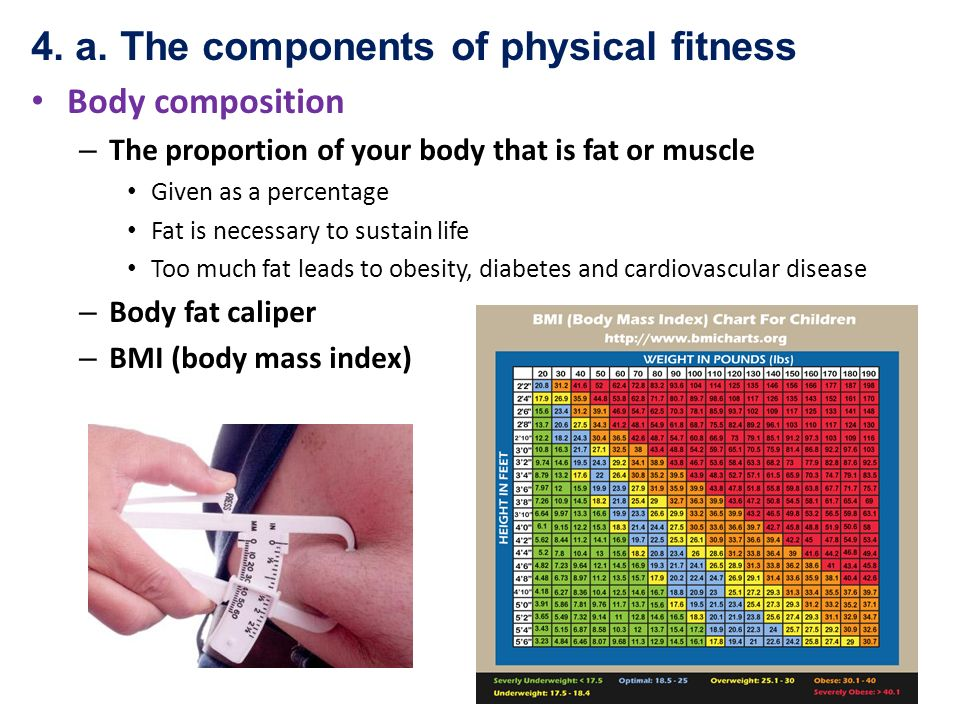 physical fitness chart - Intoanysearch - components of fitness