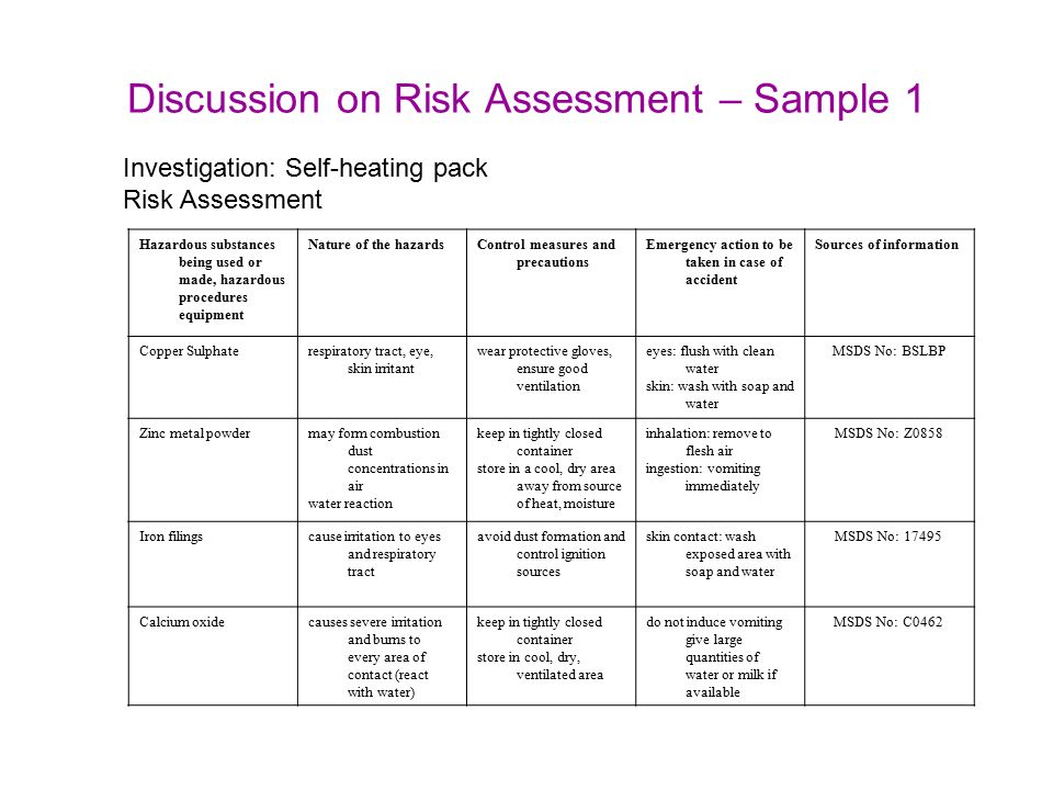 Sample Risk Assessment Template - Eliolera.com