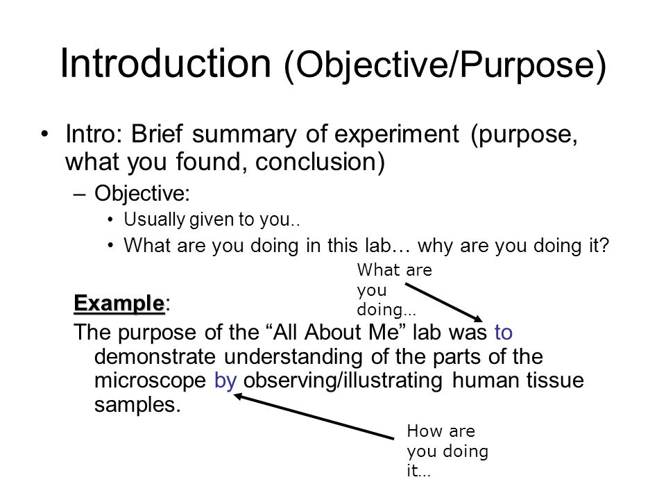 scientific reports template