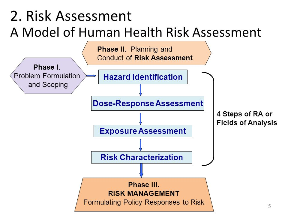 Health Risk Assessment Participation In This Health Risk   Health Risk  Assessment