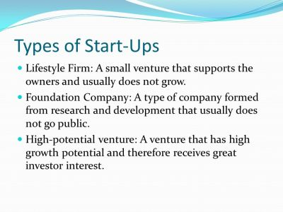 The Nature and Importance of Entrepreneurs - ppt video ...