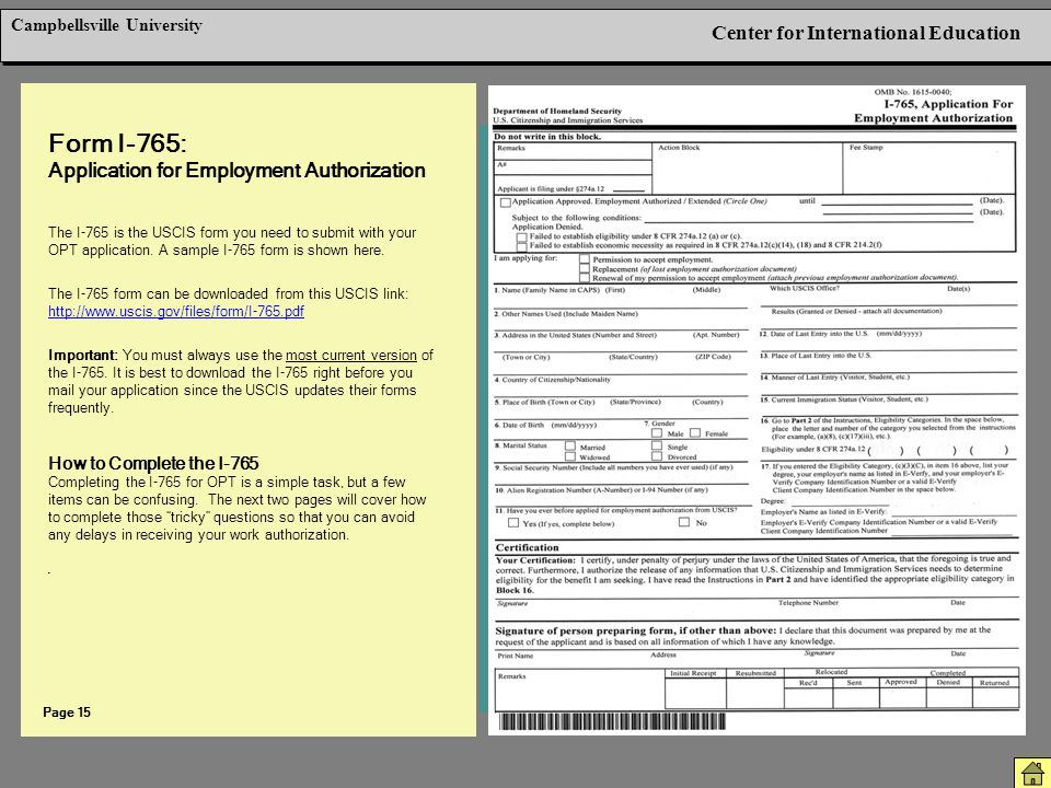 Employment Authorization Form Example sample employment – Sample Employment Authorization Form