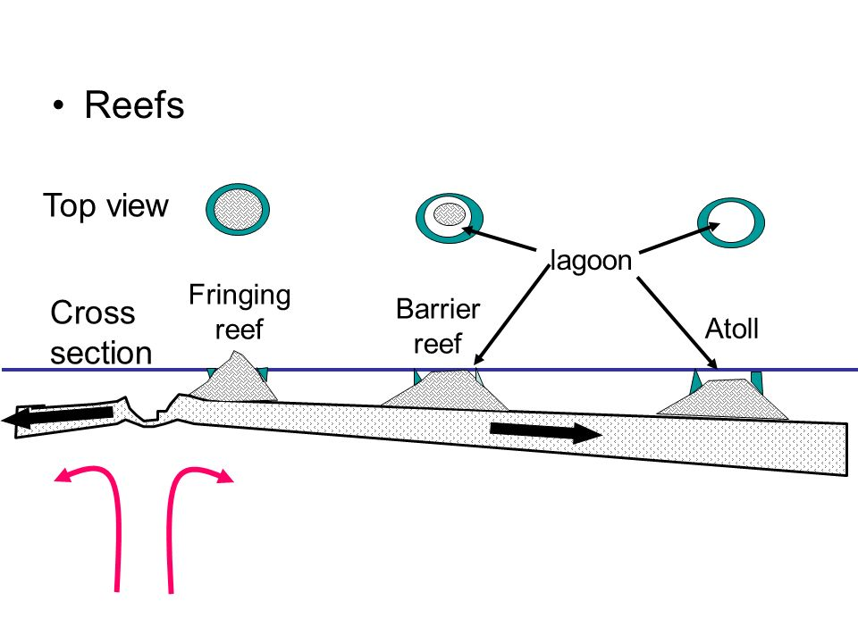 lava plain diagram