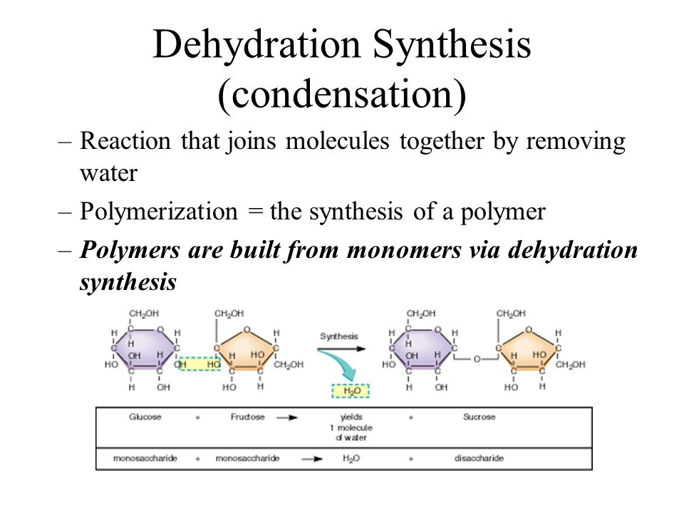 Dehydration synthesis reaction Custom paper Sample - johndfurlong