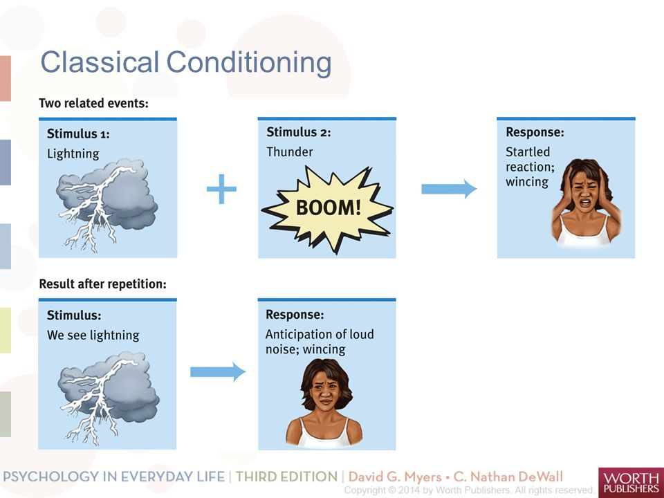 Examples Of Classical Conditioning Cvfreeo