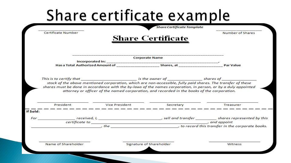 shareholder certificate template - Gidiye.redformapolitica.co