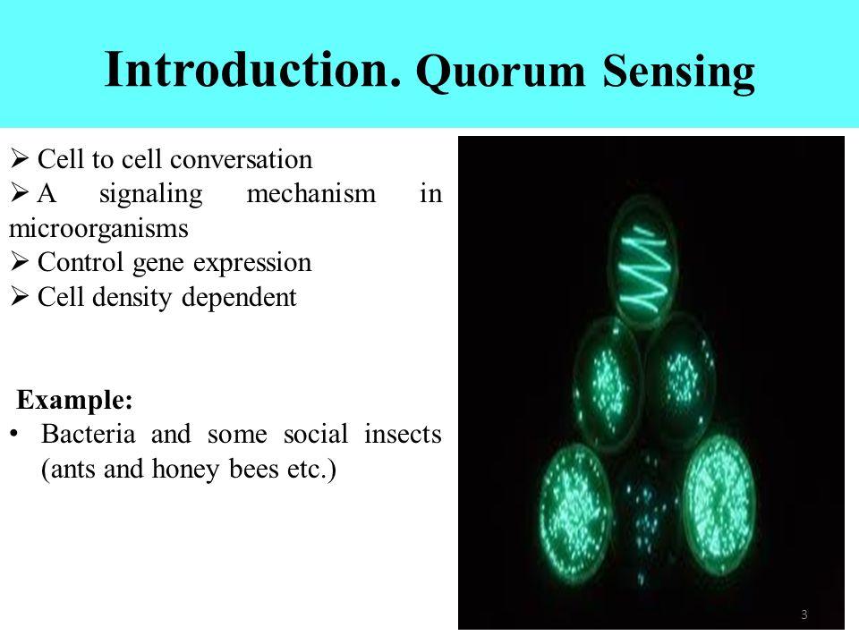what is quorum sensing