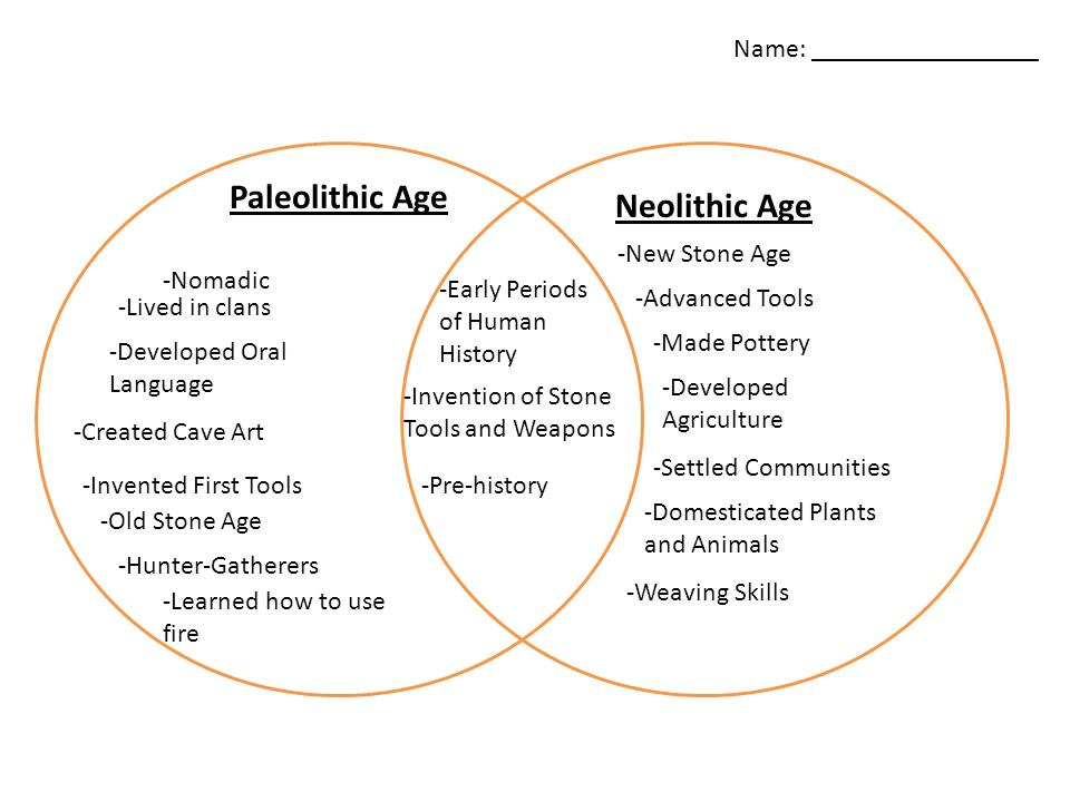 The paleolithic and neolithic periods Term paper Help