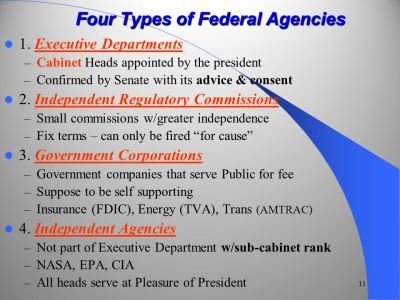 The Federal Bureaucracy - ppt video online download