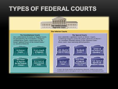 THE NATIONAL JUDICIARY - ppt video online download