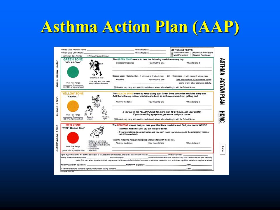 Asthma Basics Minnesota Department of Health Asthma Program - ppt - sample asthma action plan