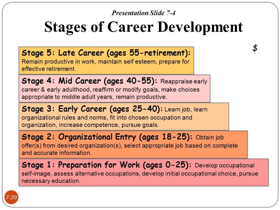 Managing Human Resources ohlander  Snell  Sherman - ppt video - vocational development stages