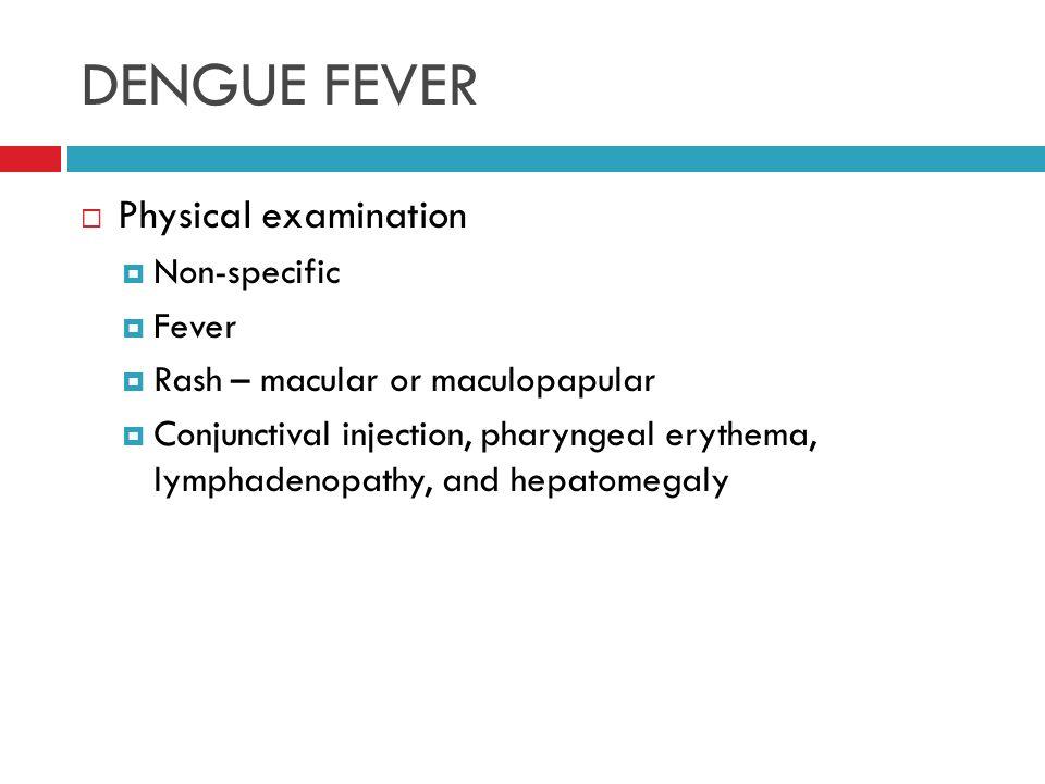 Essay Examination Fever