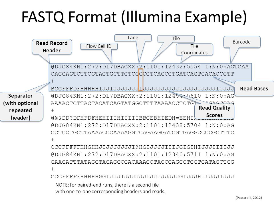 fastq format - Barebearsbackyard - data analysis format
