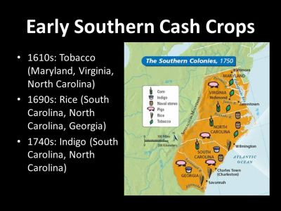 Class Conflict in the Southern Colonies - ppt download
