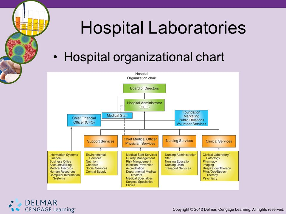 Introduction to the Clinical Laboratory - ppt video online download