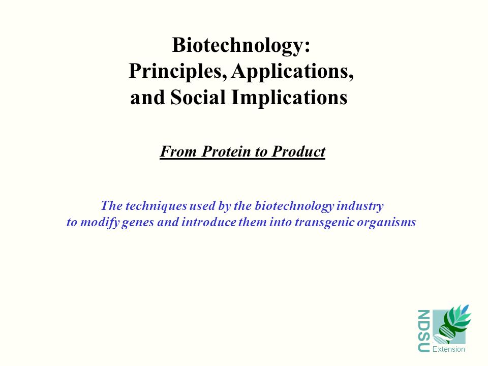 biotechnology Definition Examples amp Applications - dinocroinfo
