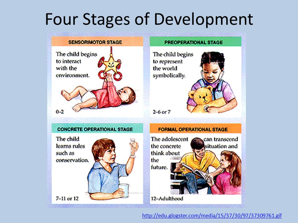 Jean Piaget Theory of Cognitive Development in Children - ppt video