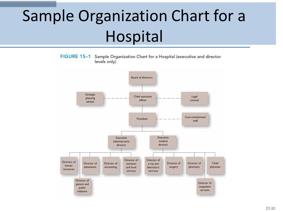 Designing Effective Organizations - ppt video online download - hospital organizational chart