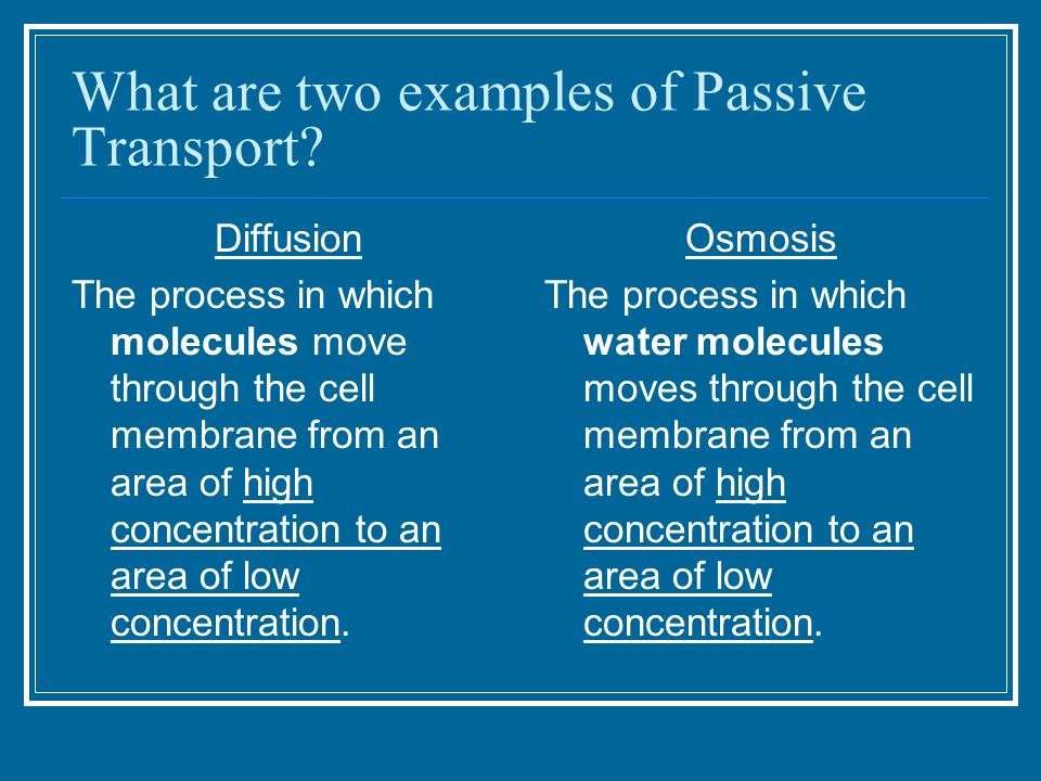 examples of active transport - Ecosia