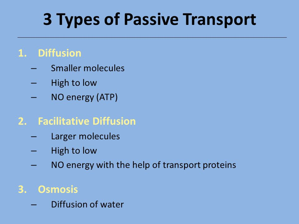 Passive  Active Transport - ppt video online download