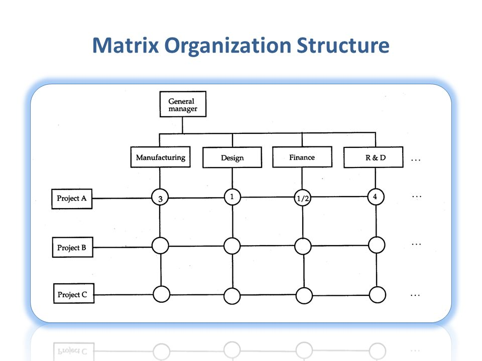TYPES OF ORGANISATION - ppt video online download