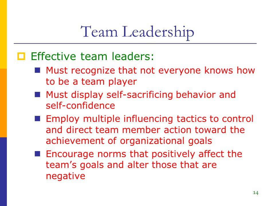 Team Leadership and Self-Managed Teams - ppt download