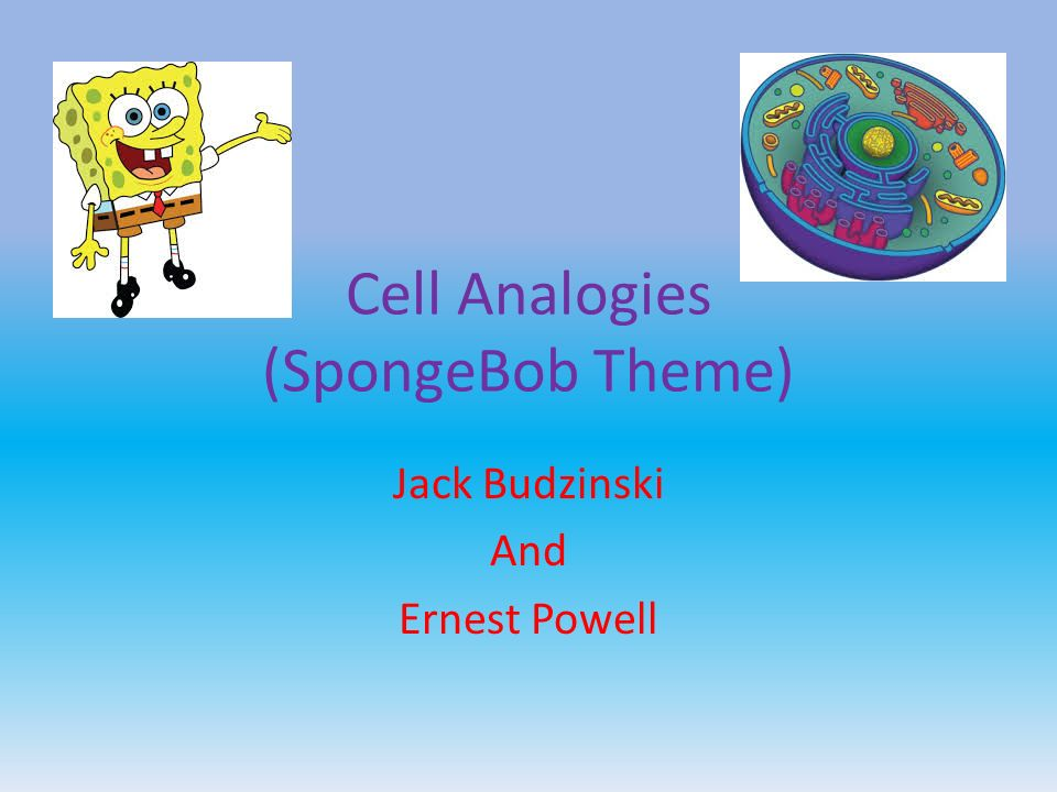 Cell Analogies (SpongeBob Theme) - ppt video online download