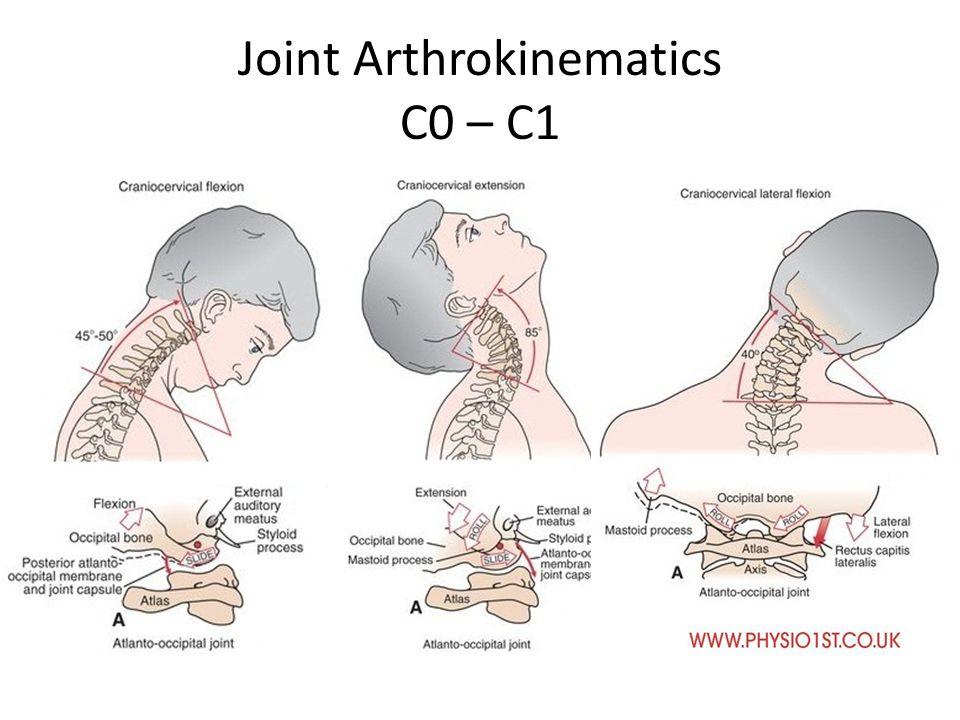 Ligamentous Anatomy Cervical Spine - ppt video online download