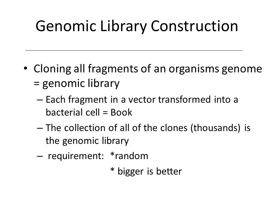 Genomic and cDNA libraries - ppt download