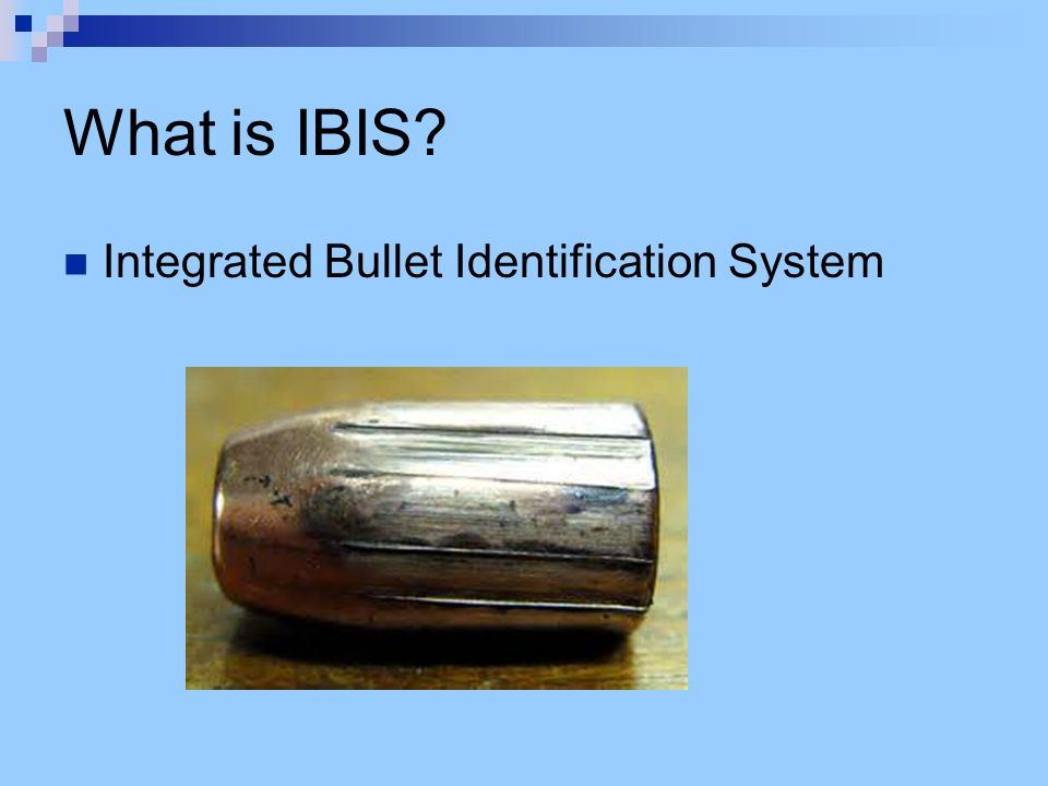 Firearms  Bullets - ppt download