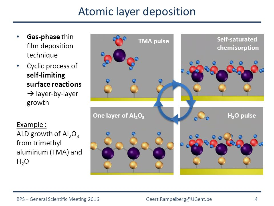 Thermal and Plasma-Enhanced Atomic Layer Deposition on Powders and
