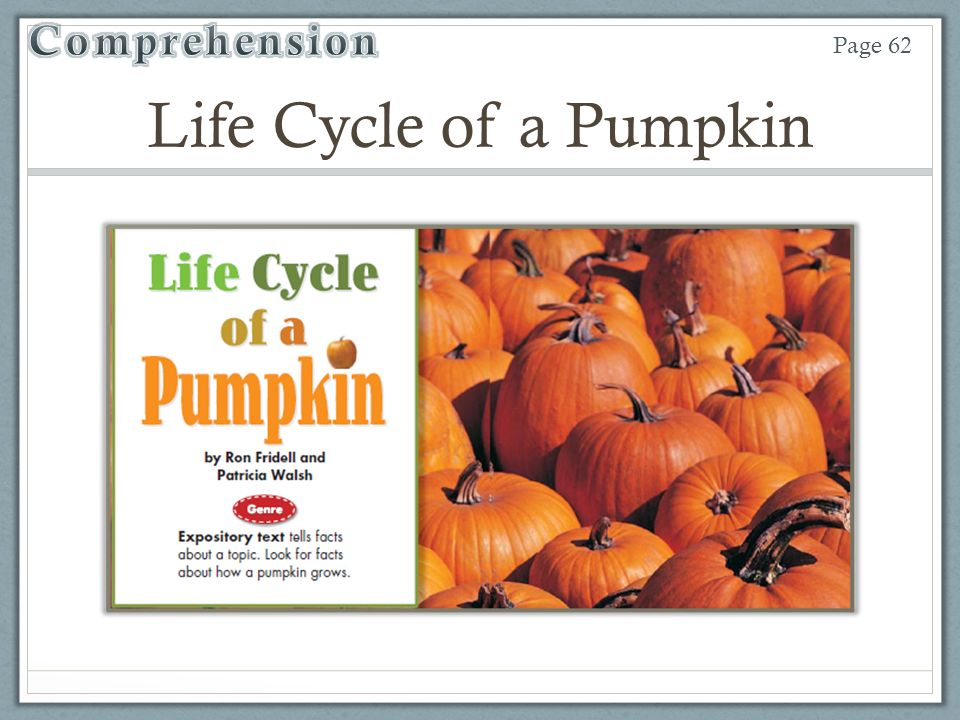Unit 4 Week 2 Life Cycle of a Pumpkin - ppt video online download