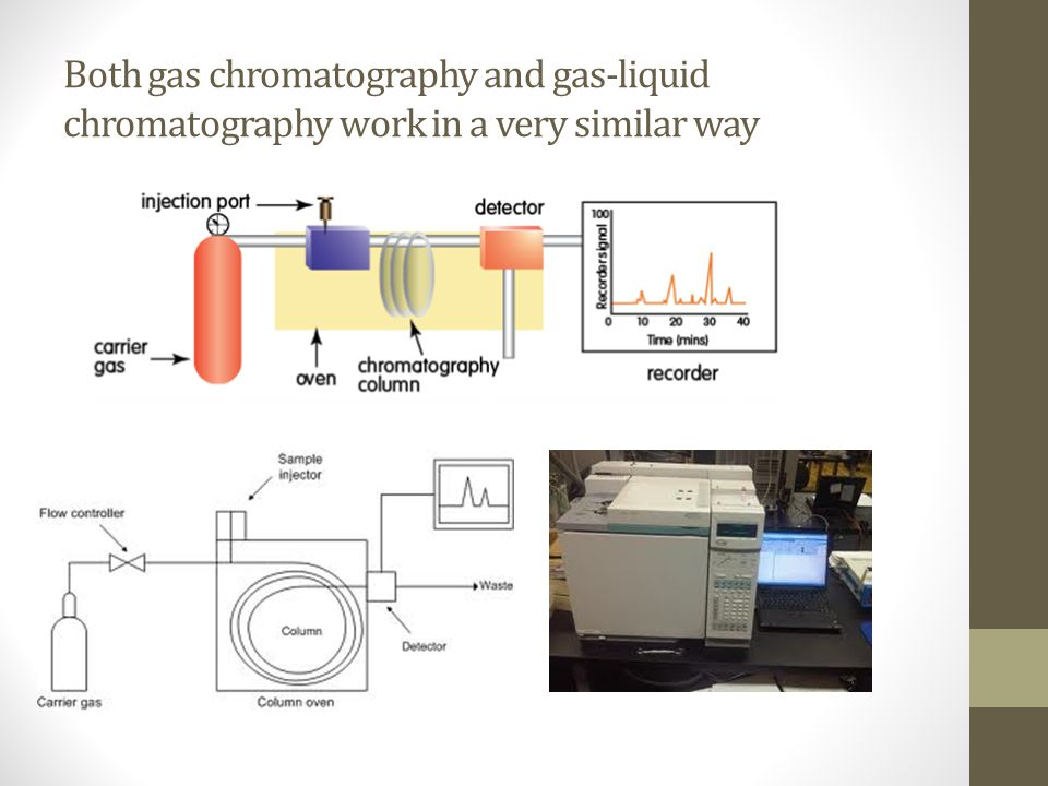 Gas Chromatography  Gas-Liquid Chromatography - ppt video online