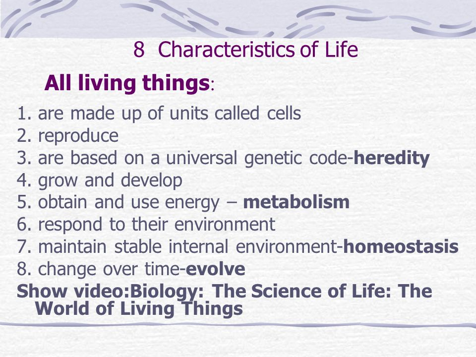 8 characteristics of living things youtube what is biology e how do you compare and contrast living organisms