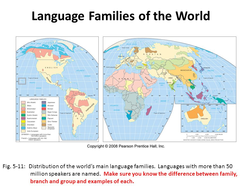 Example of language family