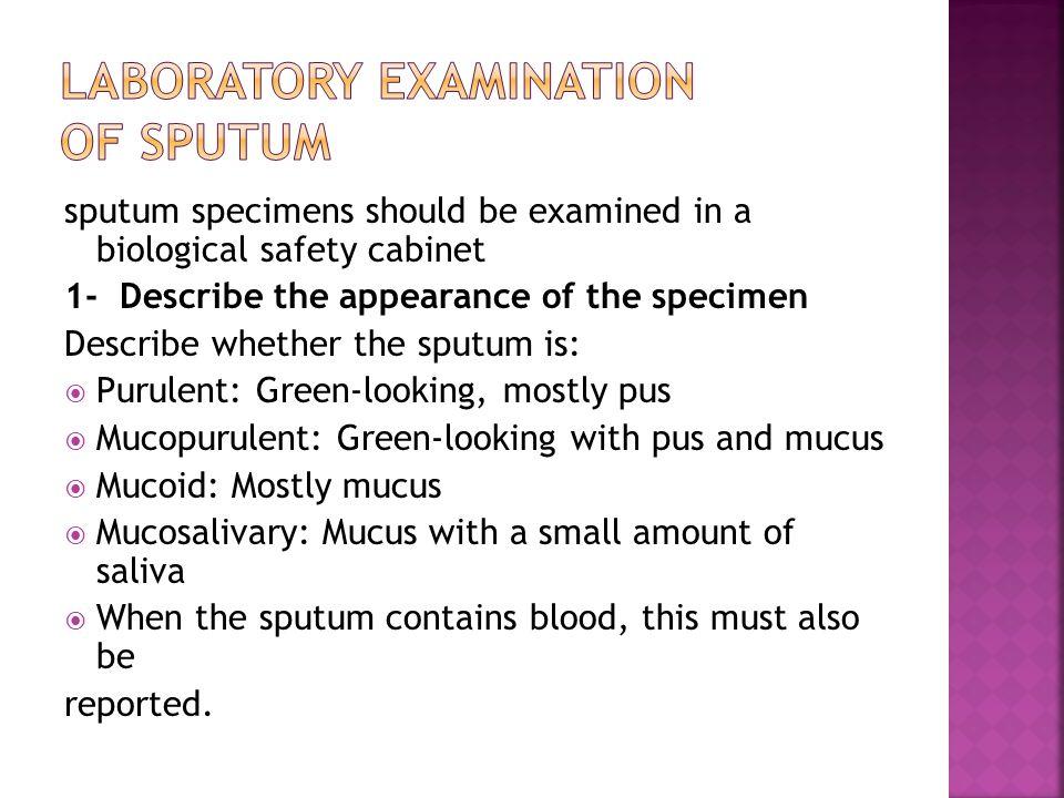 Examination of sputum - ppt video online download