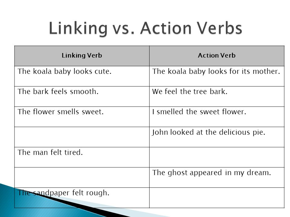 Verbs\u2013 types of verbs  infinitives - ppt video online download - what is an action verb