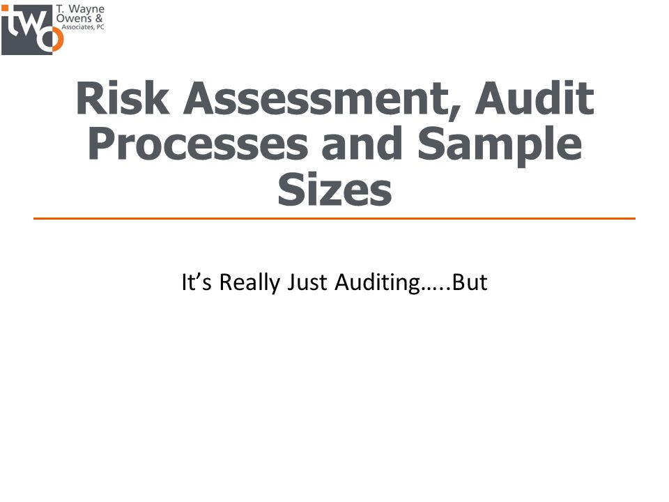 Risk Assessment, Audit Processes and Sample Sizes - ppt download