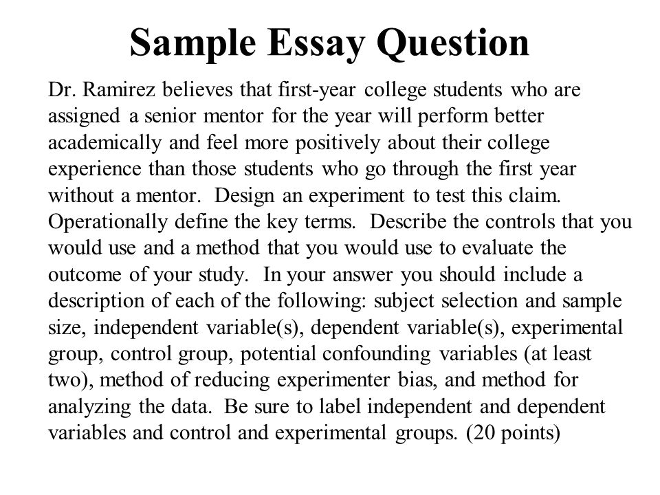 Example of essay about life College paper Help wqcourseworkyujw