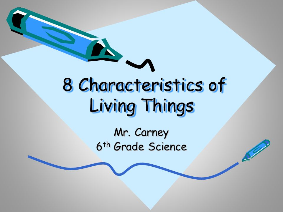 8 Characteristics Of Living Things Ppt Online Download 8 Characteristics Of Living Things