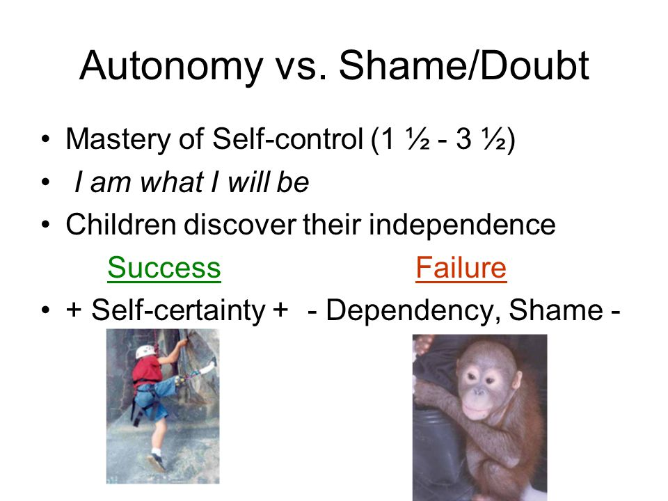 Developmental Psychology - ppt video online download