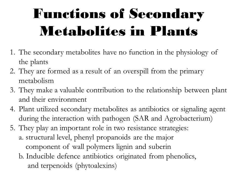 Plant Defense and Secondary metabolism - ppt video online download