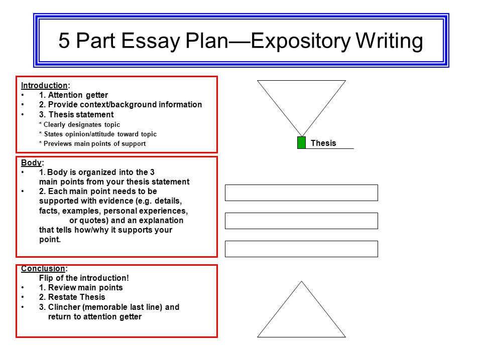 Essay Writing Expository Writing Opinion Essay - ppt video online