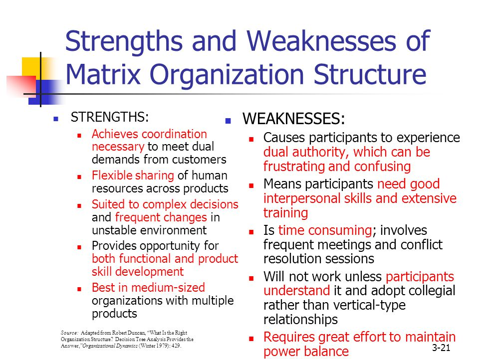 Matrix structure strength and weakness Essay Academic Service