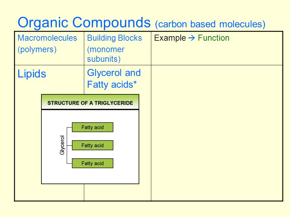 Notes Macromolecule Table Objective Cell biology standard 1h