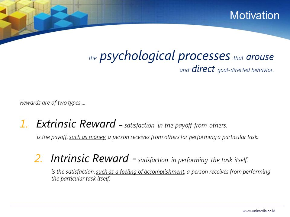 Motivating Employees Achieving Superior Performance in the
