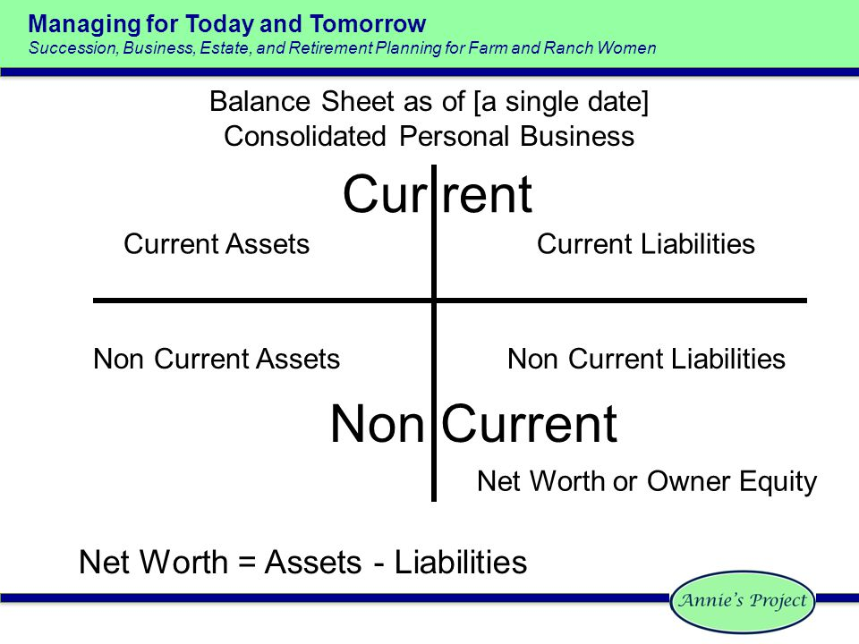 Managing for Today and Tomorrow - ppt video online download - assets liabilities net worth
