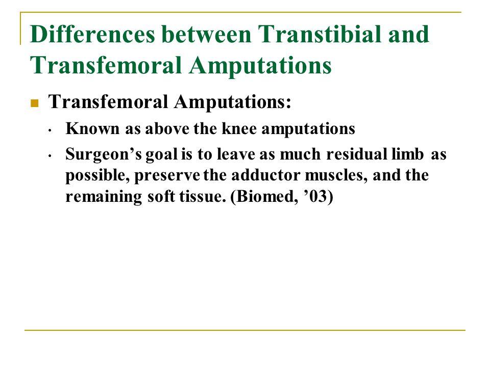 Transtibial Amputation - Ppt Video Online Downloadgastrocnemius