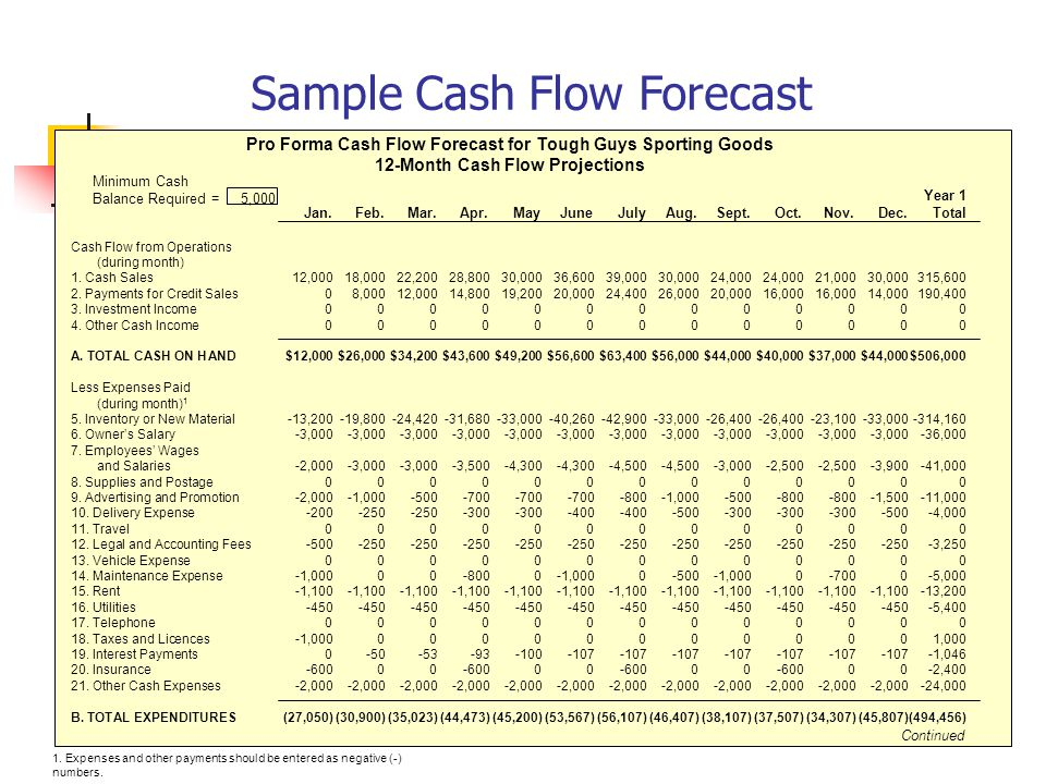 Understanding Your Financial Requirements - ppt video online download - pro forma cash flow example